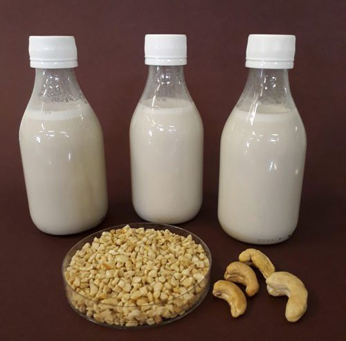 Embrapa desenvolve bebida da castanha-de-cajú com probióticos
