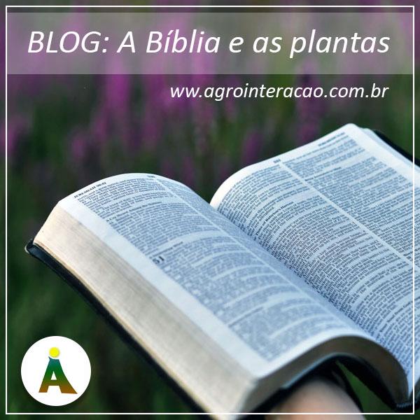 A Bíblia e as plantas