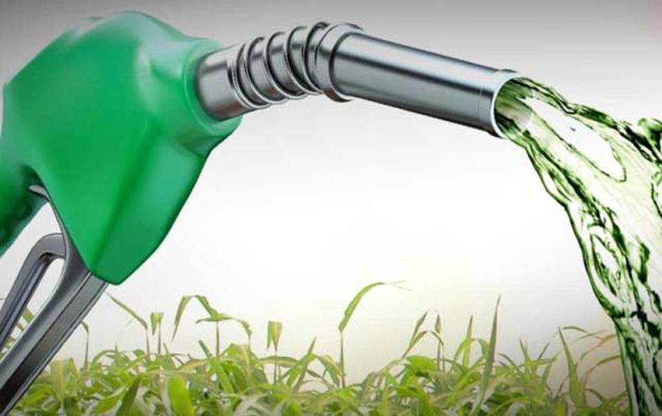Produção de etanol combustível em pequenas propriedades rurais