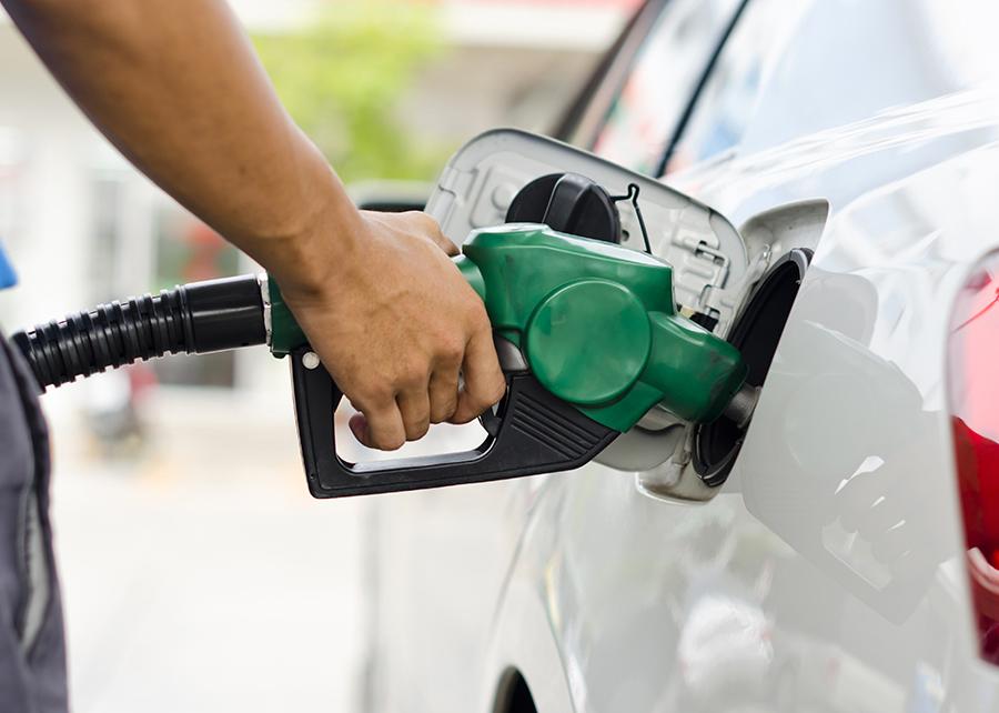 Mistura de enzimas mostrou alto desempenho para gerar etanol a partir de bagaço de cana