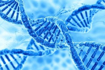 genÉTICA e o futuro da agricultura
