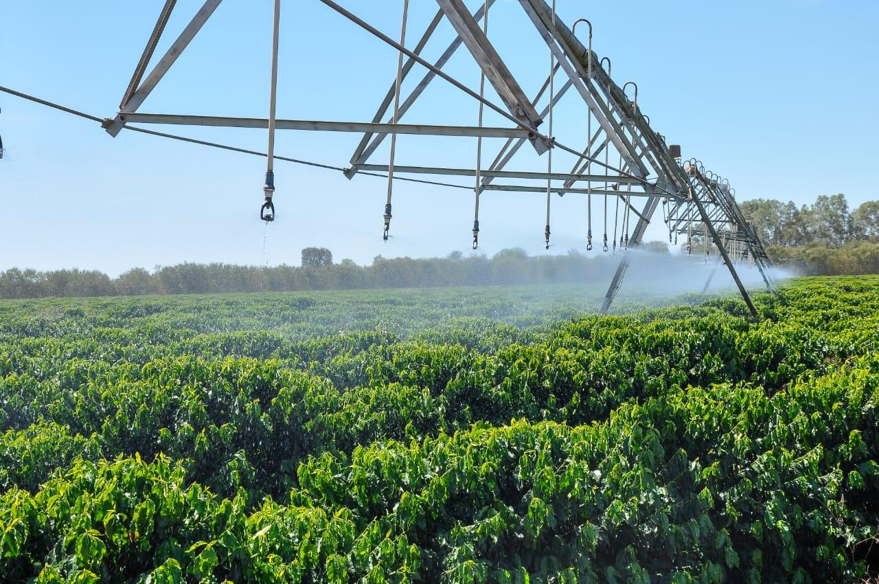 Artigo – Mitos e Fatos na agricultura irrigada (parte I)
