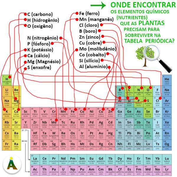 Os elementos químicos (nutrientes) que as plantas precisam na tabela periódica