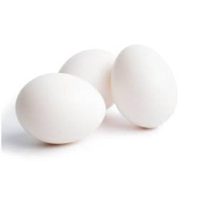 MicroBlog: Produção de ovos de galinhas para a fabricação de vacinas