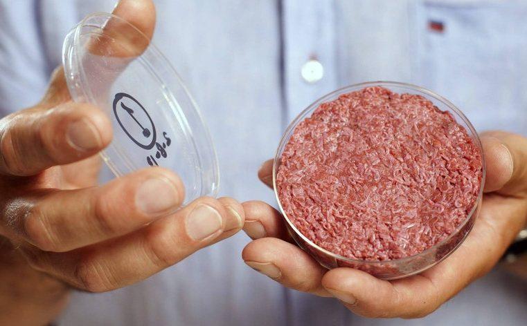 REFLEXÃO: sobre o consumo de carne feita em laboratório, demanda de alimentos até 2050, e a influência da publicidade para gerir novos hábitos de consumo