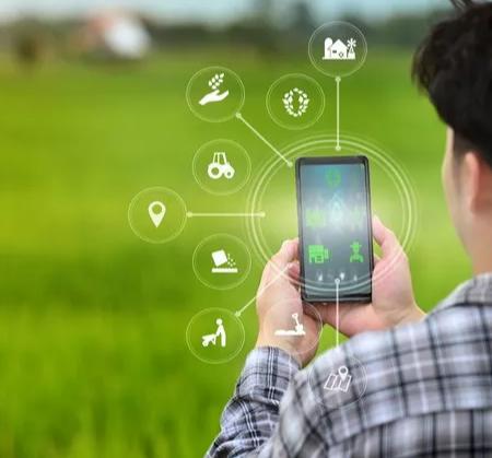 Texto crítico sobre o uso de tecnologias no ambiente agrícola