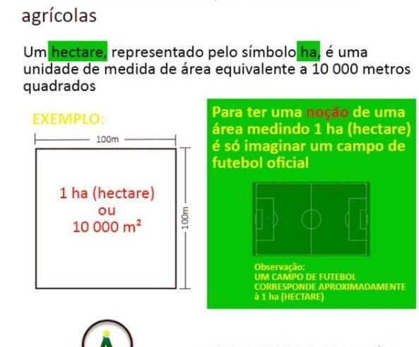 O tamanho de um campo de futebol e a medida de um hectare