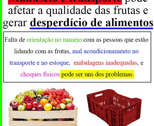 Manuseio e transporte pode afetar a qualidade das frutas e gerar desperdício de alimentos